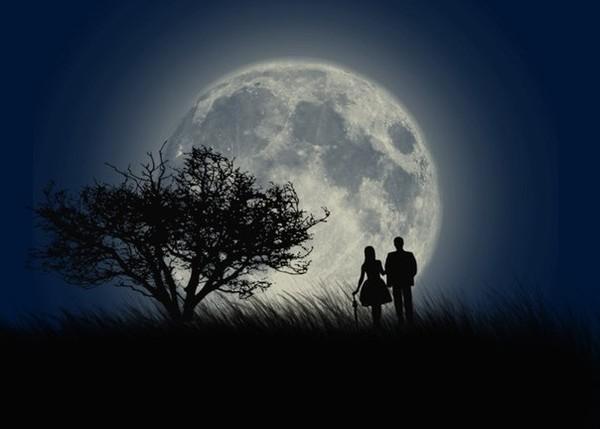 Прогулка под луной